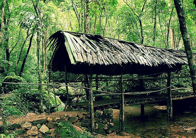 Thommankuthu-Wooden-Bridge