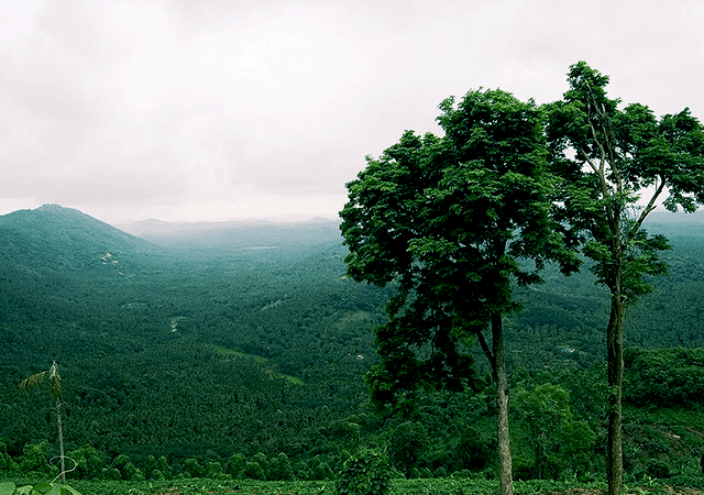Arimbra Hills