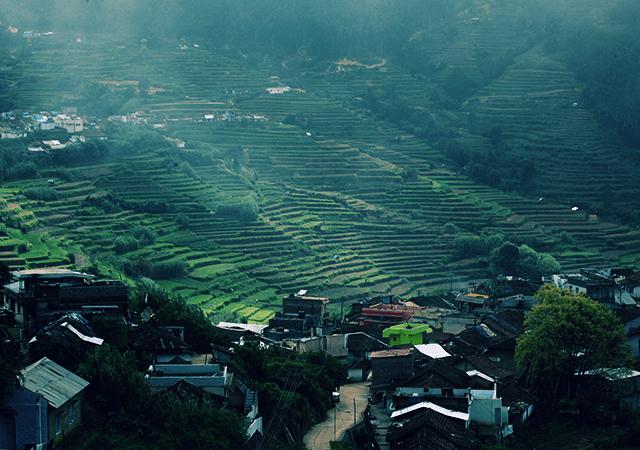 Fogged village of Vattavada