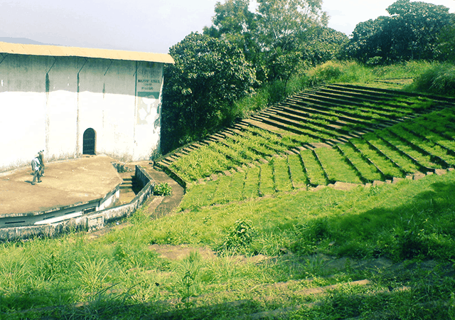 Terraced Slopes in Vilangankunnu