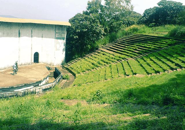 Terraced Slopes in Vilangankunnu