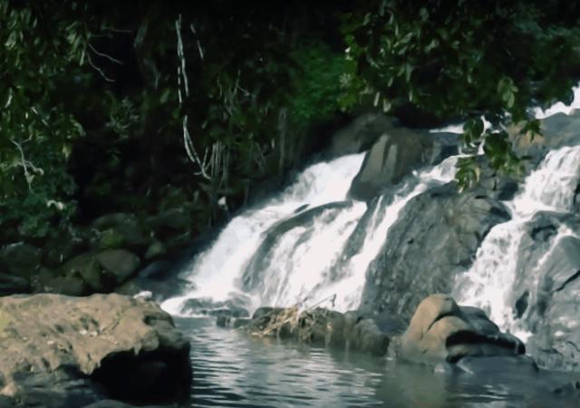 Aruvikuzhy Waterfalls