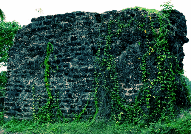 Kottappuram Fort