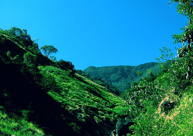 Trekkers Paradise- Vellarimala