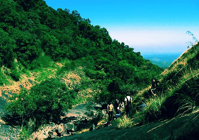 Climbing Vellarimala