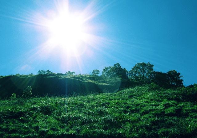 Grasslands of Vellarimala