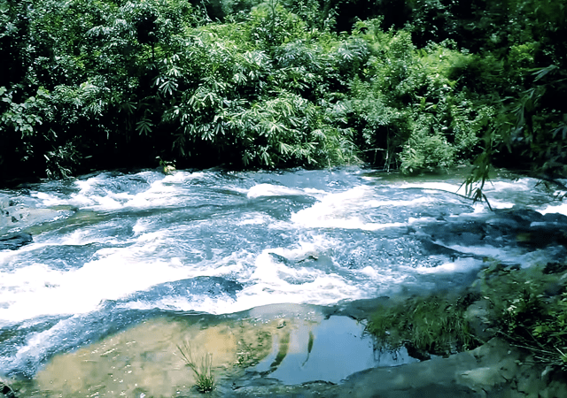Small River Near Uluppuni
