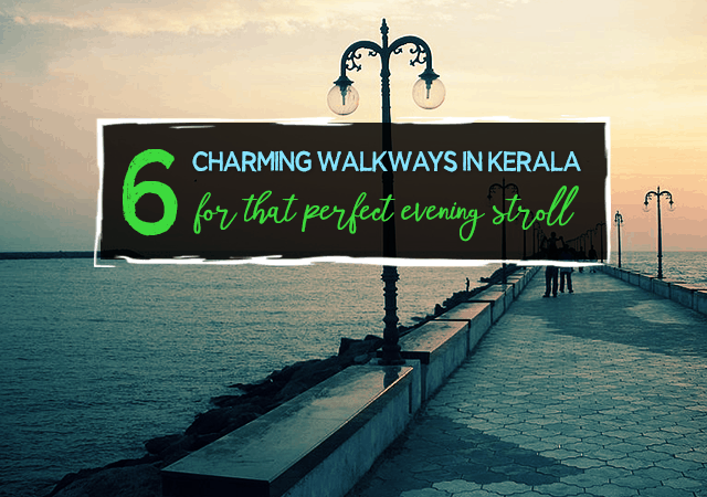 6 Charming Walkways in Kerala for the Perfect Lazy Evening Stroll