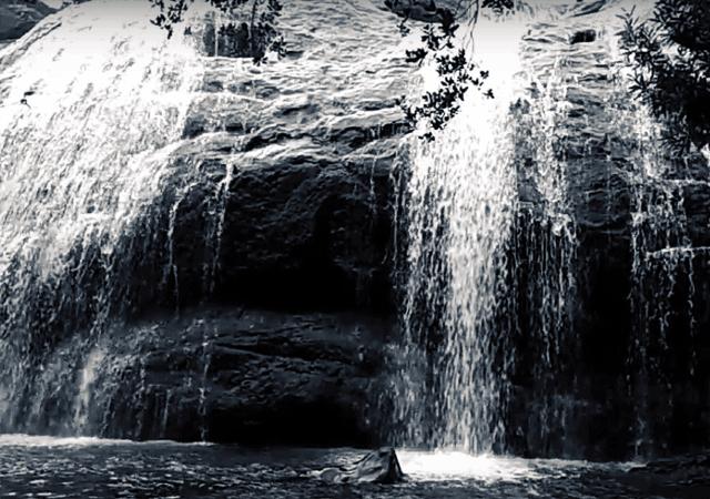 Forceless Anayadikuthu Waterfall