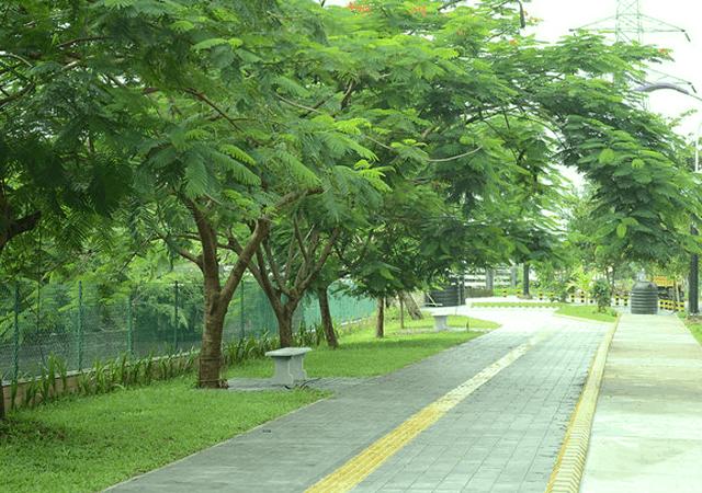 Streetscape Walkway
