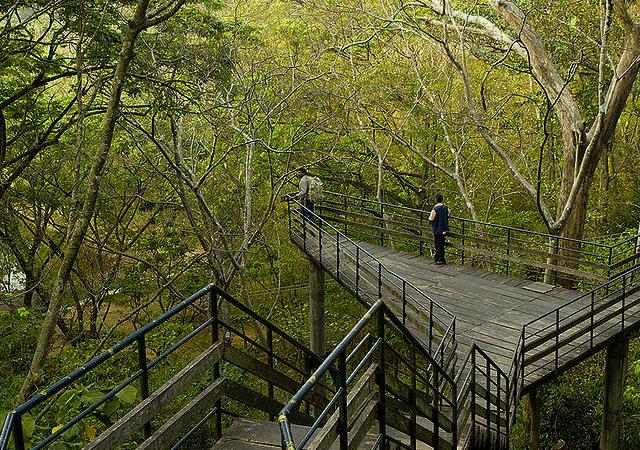 Thenmala Walkway