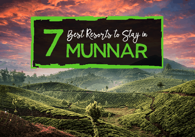 7 Best Resorts to Stay in Munnar