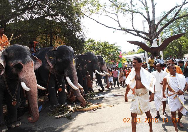 Guruvayur Aanayottam
