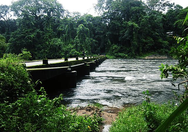 Pooyamkutty Bridge