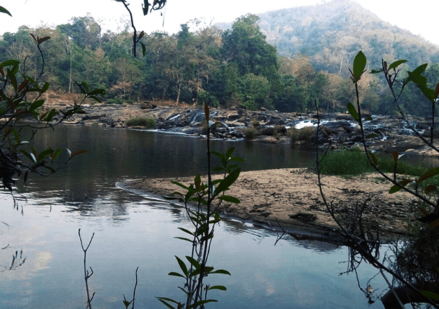 Pooyamkutty River