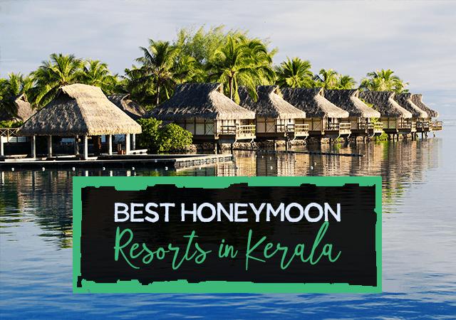 Best Honeymoon Resorts In Kerala Paradise Holidays Cochin