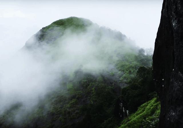 Fog at Kattadikadavu