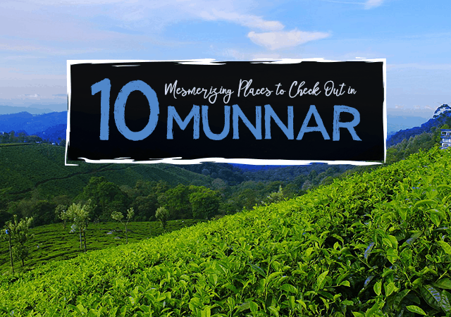 10 Mesmerizing Places to Check Out in Munnar