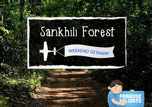 Sankhili Forest