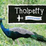 Tholpetty