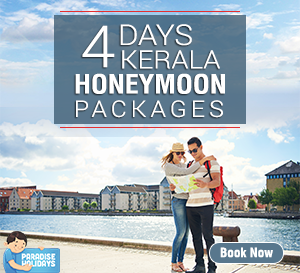 4 Days Kerala Honeymoon Packages