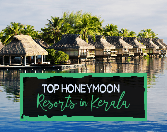 Best Honeymoon Resorts in Kerala