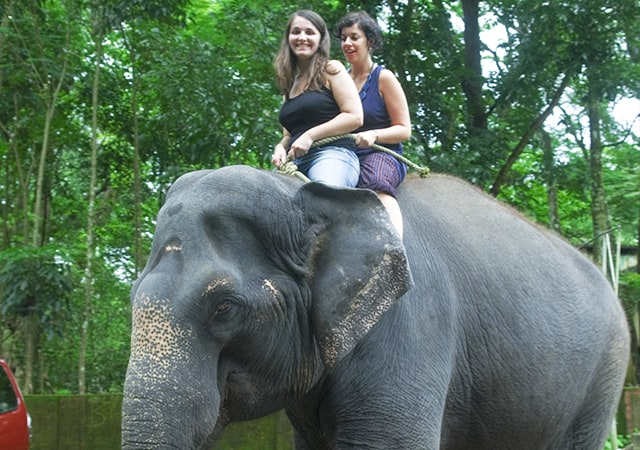 Riding-the-elephant