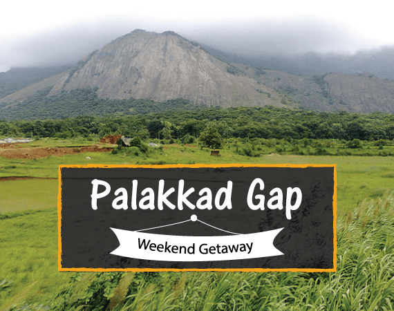 Weekend Getaway – Palakkad Gap