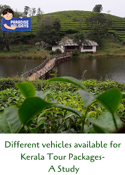 Different vehicles available for Kerala Tour Packages- A Study