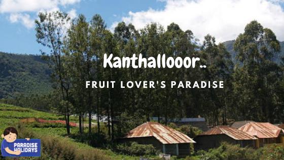 Kanthalloor—Fruit lover's Paradise