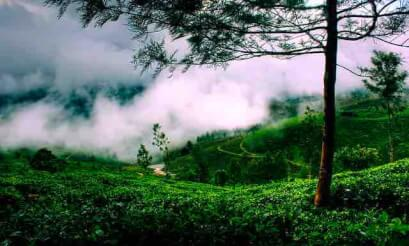 Photography The Beauty Of Kerala In 50 Stunning Images Paradise Holidays Blog