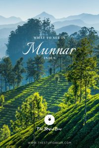 Munnar guide